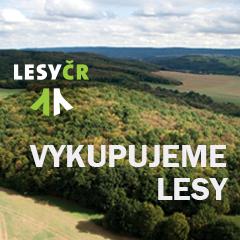 Státní podnik Lesy ČR koupí Vaše lesy