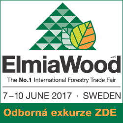 ElmiaWood 2017