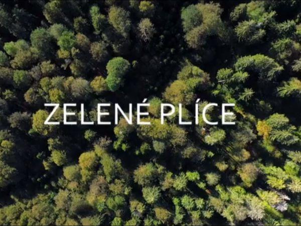 Vznikl nový dokumentární film o šumavských lesích