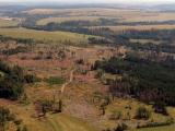 Aktuální stav kůrovcové kalamity pohledem lesníků v regionech