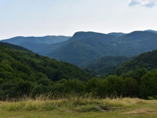 Priliaty olej do ohňa sporu medzi lesníkmi a ochranármi na Slovensku