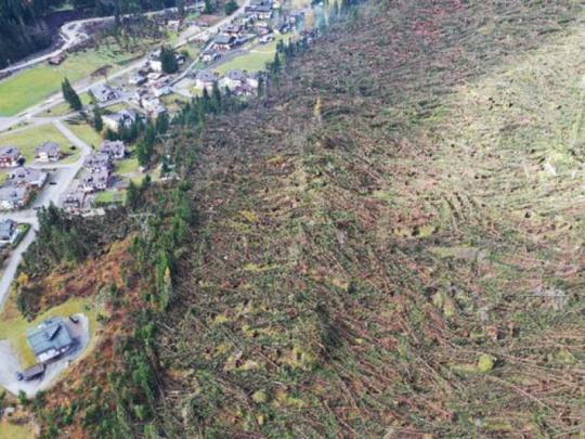 Škody po orkánu v Itálii zničily zhruba 15 milionů kubíků dříví