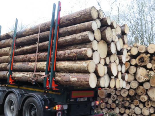 Rakouští lesníci protestovali na hranici s ČR proti dovozu dřeva