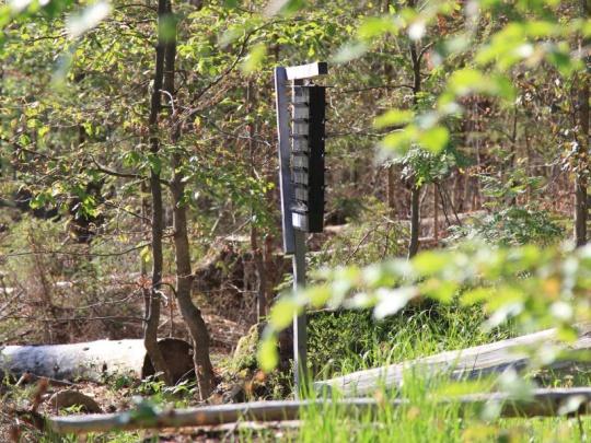 Agrární komora a část lesníků žádají po vládě opatření kvůli kalamitě