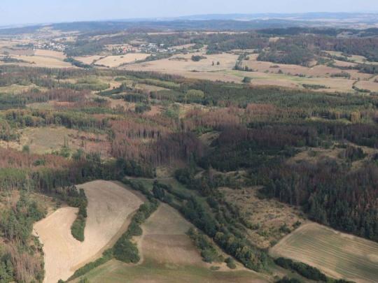 Kůrovcová situace a podpora vlastníků lesů v jednotlivých krajích
