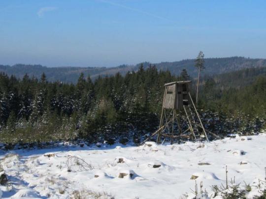 Vojenské lesy a statky vykážou zisk 565 milionů korun