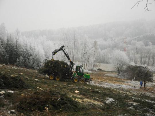 Lesy ČR vyhlásily lesnické tendry na období 2018 až 2021