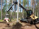 VLS spustily poptávkový systém na lesnické práce do roku 2024