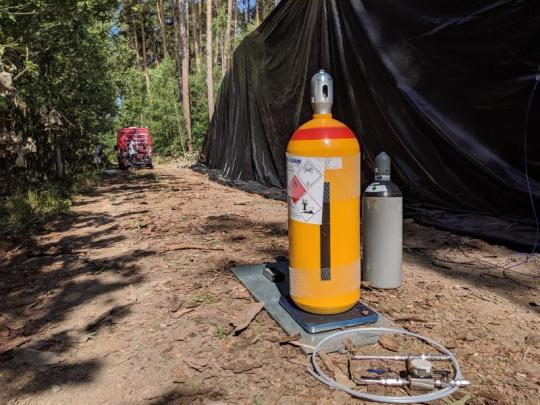 Povolen přípravek EDN (ethandinitril) k fumigaci dříví napadeného kůrovcem