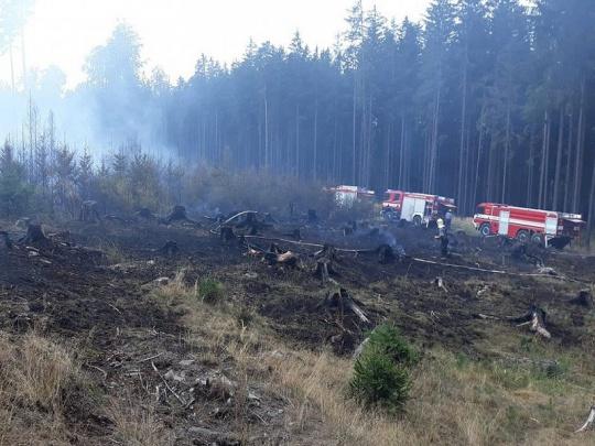 Na Plzeňsku a Berounsku zasahovali hasiči u rozsáhlejších lesních požárů