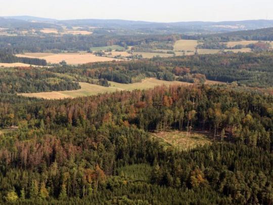 Kraj Vysočina pro letošek chystá 30 mil. Kč dotací na obnovu lesů