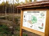 Proč je nutné veřejnosti vysvětlovat, co se děje s lesem?