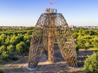 Dřevěná stavba roku 2019: Které stavby vyhrály?