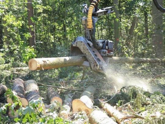 V  tendru Lesů ČR podala nejvíce nejvýhodnějších nabídek firma Uniles