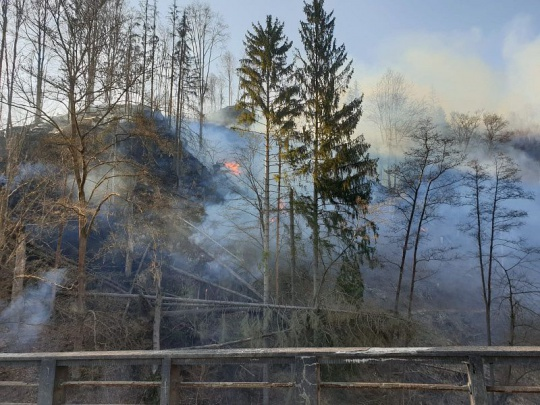 Přibývá požárů lesů, na Jablonecku hořel les na 28 hektarech