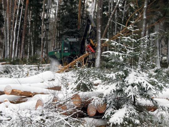 LČR uzavřely tendr 2018+, nejvíc smluv má Lesní společnost Ledeč
