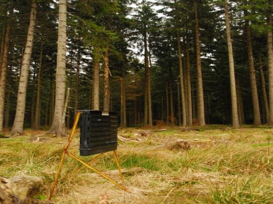 SVOL: Kůrovcová kalamita nekončí, je potřeba hledat odbyt dřeva