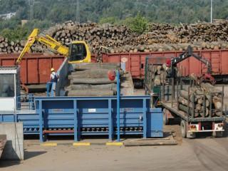 Rakousko zvažuje spalovat více dřeva, aby omezilo dovoz elektřiny a plynu
