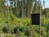 SVOL vyzývá veřejnost k podpoře soukromých vlastníků lesů formou petice
