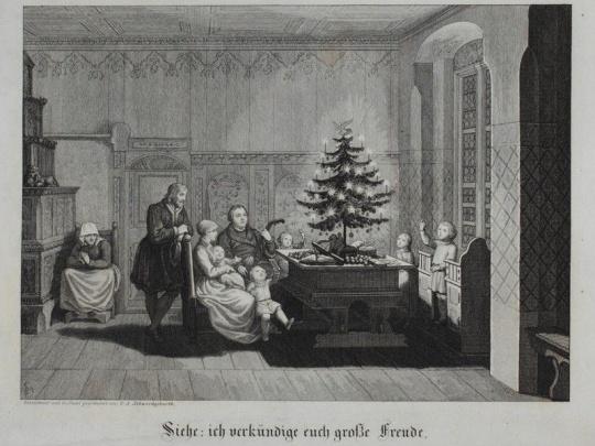 Vánoční stromek: od kuriozity k symbolu Vánoc