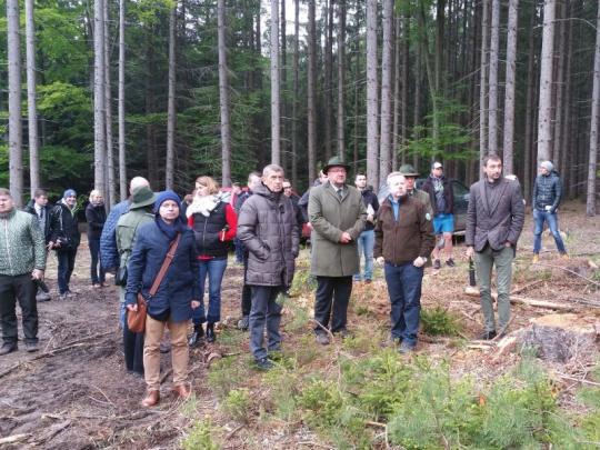 Politici jednali na Vysočině o stavu a podpoře lesů