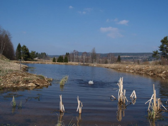 ČR dá desítky miliard korun na boj proti suchu, schválila vláda (ČTK)