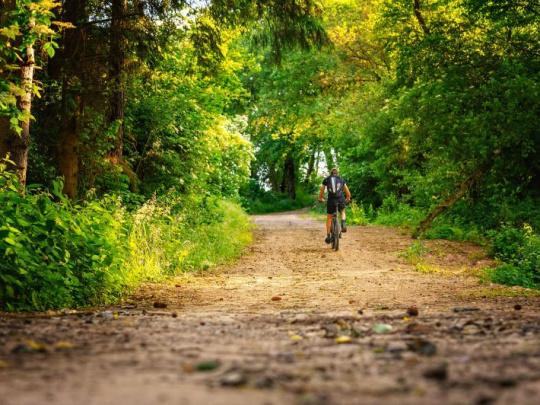 SVOL: Povinný odstup při předjíždění cyklisty by znamenal kolaps na lesních cestách