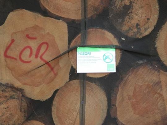 Lesy ČR posunuly podání nabídek do miliardového tendru na 19. října
